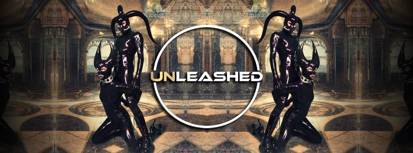 Previous Event – UNLEASHED Amsterdam – May 6th 2017